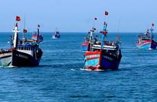 澳大利亚边境执法署扣留29名越南渔民