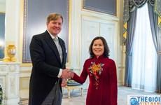 荷兰十分重视发展与越南的关系