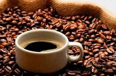巴西拟从越南进口罗布斯塔咖啡豆