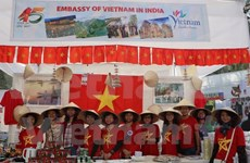 越南参加在印度举行的国际慈善义卖会