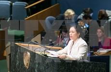 越南呼吁各国继续兑现发展援助承诺