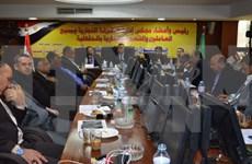 埃及企业寻找在越南合作商机