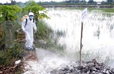 越南严防亚型H7N9禽流感疫情及各种人感染禽流感疫情传入越南