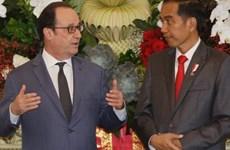印尼与法国承诺加强多个领域的合作