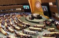 越南代表参加联合国禁止核武器条约谈判   呼吁各国履行核裁军承诺