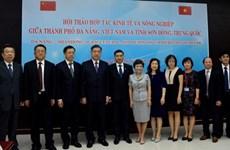 越南岘港市与中国山东省加强经济和农业领域的合作
