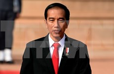 印尼总统佐科:2045年印尼将成为全球第四大经济体