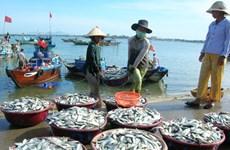 越南注重保护和恢复水产资源