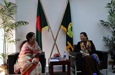 越南重视维护和加强与各国的传统关系