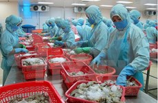 2017年一季度越南水产品出口额可达15亿美元