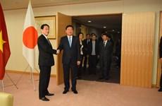 胡志明市高级代表团对日本进行访问