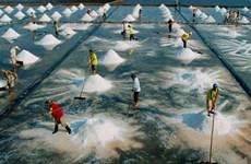 越南旅游:薄辽省第一季度到访游客量达48万人次