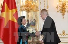 越南国会主席阮氏金银会见捷克总统米洛什·泽曼