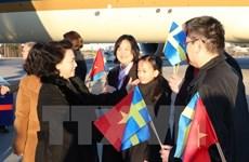 进一步推动和深化越南与瑞匈捷三国的双边关系