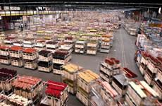 越南政府副总理郑廷勇访问荷兰 参观世界上最大鲜花拍卖市场