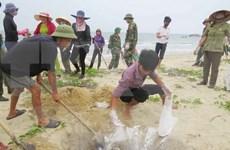 张和平副总理:需要确保海洋环境事故赔偿工作的公开性和民主性