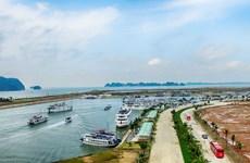 越南广宁省下龙市:令人刮目相看的下龙
