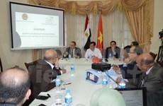 有关越南与埃及合作机遇、挑战及展望研讨会在埃及举行