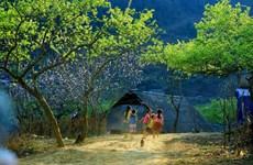 充分发挥木州国家旅游区的自然景观和当地文化特色优势