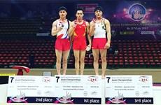 2017年亚洲体操锦标赛:越南运动员黎清松夺金