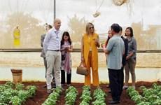 荷兰王后走访越南林同省农企和农民