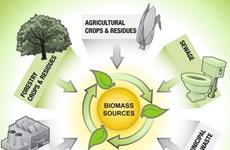 美国生物能源系统公司协助越南发展生物质能源技术