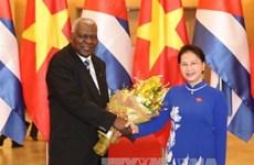 国会主席阮氏金银与古巴全国人民政权代表大会主席举行会谈