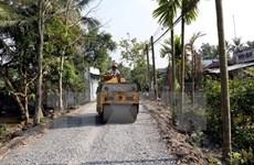 世行援助越南加强农村交通对接和森林保护工作