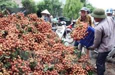北江省力争2020年前新成立企业数量达1万家