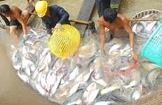 前江省水产品出口猛增 助推该省出口增长