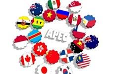 G20 – 越南与APEC 2017