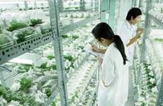 平福省希望借鉴日本高科技农业发展经验