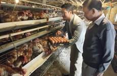 富寿省实施2012年《合作社法》取得积极成效