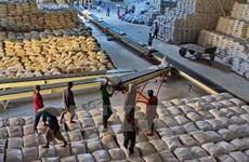 越南粳米出口激增
