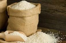菲律宾将招标进口25万吨大米