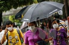 缅甸爆发禽流感和猪流感