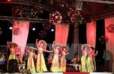 越南参加2017年世界民间文化联欢会