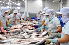 美国实施新的进口鲶鱼产品检验操作规程后  越南对美查鱼出口情况仍保持稳定