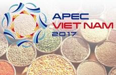 越南继续推动实施2017年亚太经合组织系列会议的优先内容