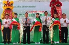 越南中部与西源地区最大木材加工厂正式投运