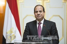 埃及总统即将对越南进行国事访问