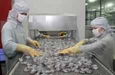 越南虾类产品出口占全球虾类出口总额的45%