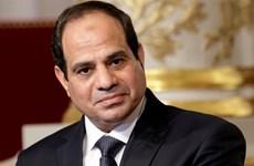 埃及总统今日开始对越南进行国事访问