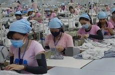 2017年越南纺织品服装出口有望达305亿美元