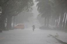 菲律宾东部遭台风龙王袭击  许多学校被迫停课
