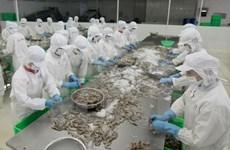 前7个月:亚洲市场对越南虾类的需求猛增