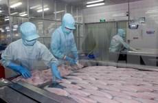美国在第十三次行政复议中再次提高对越南查鱼的反倾销关税