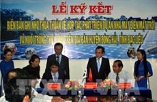 韩国集团将在越南建设太阳能发电厂