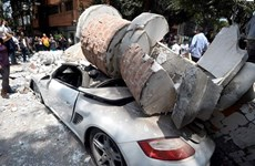 外交部发言人:尚无越南公民在墨地震伤亡报告