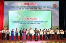 越南农民生产经营能手全国代表大会在河内举行